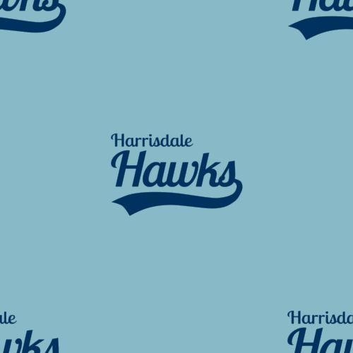 HarrisdaleHawksTile